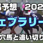 【競馬予想】フェブラリーステークス2020 激走穴馬と追い切り診断
