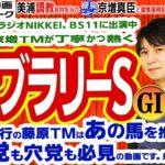 【競馬ブック】フェブラリーステークス 2020 予想【TMトーク】美浦