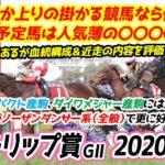 チューリップ賞2020【競馬予想】|良馬場なら人気決着が濃厚!?でも、一雨降って馬場が渋るか上りの掛かる競馬になればアノ馬が一発候補して浮上!