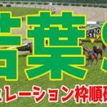 2020 若葉ステークス シミュレーション 枠順確定【競馬予想】