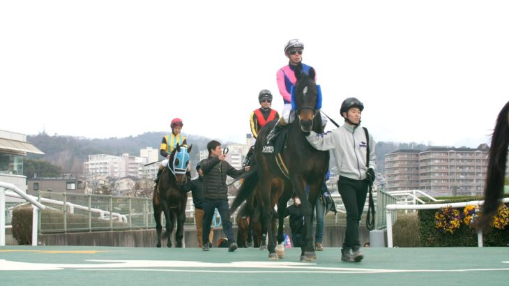 HORSE RACE SOUND 競馬の「音」