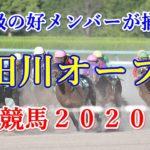 隅田川オープン【大井競馬2020予想】重賞級の好メンバーが揃ったレース