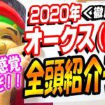 【予想】2020 オークス(G1) 全頭予想【競馬】