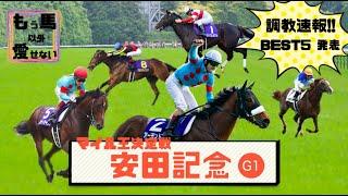 【競馬予想】安田記念 2020 〜最終追い切り評価BEST5〜アーモンドアイ史上初の8冠なるか?