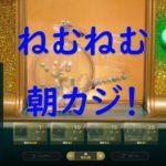 ゆかり&きりたん 朝カジノ生放送  高額配当で即終了 【JoyCasino】