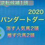 【競馬予想】 地方交流重賞 ジャパンダートダービー 2020 予想