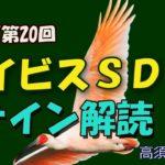 【競馬】2020 アイビスSDのサイン解読 #190