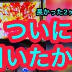 モンキーターン4【パチスロ実践動画】フリーズをやっと引いたよ・・・