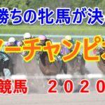 サマーチャンピオン【佐賀競馬場2020予想】G1勝ちの牝馬が決める!