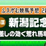 【競馬予想】 2020 新潟記念 差しの効く荒れ馬場への適性を!