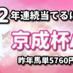 【競馬予想】京成杯オータムハンデ2020馬単で2年連続当てる裏技とは??【競馬女子】