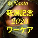 【新潟記念2020予想】ワーケア【Mの法則による競馬予想】