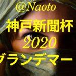 【神戸新聞杯2020予想】グランデマーレ【Mの法則による競馬予想】