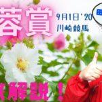 【田倉の予想】9月1日川崎競馬・芙蓉(ふよう)賞(戸塚記念TR) 徹底解説!