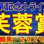 芙蓉賞【戸塚記念TR】川崎競馬2020予想