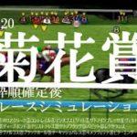 2020 菊花賞 競馬予想 レースシミュレーション(枠順確定後)