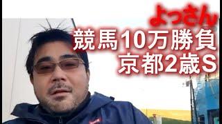 よっさん 競馬10万勝負 vs 京都2歳S GIII  2020年11月28日15時