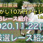 (11月22日日曜日競馬予想)  全レース予想 競馬予想 絶好調の人が予想した厳選レース紹介 複勝転がし10万円チャレンジ!!(1コロ目&2コロ目)