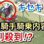 【競馬】キセキ天皇賞秋2020で5着完敗。レース運びは良かったのか?