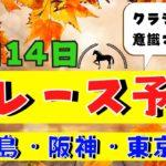 【週間競馬予想TV】2020年11月14日(土) 中央競馬全レース予想〜狙い馬・推奨レース〜を公開。福島・阪神・東京の平場、特別戦、重賞レース、デイリー杯2歳ステークス、武蔵野ステークス。注目馬を考察