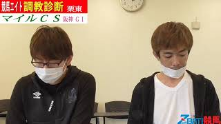 【競馬エイト調教診断】マイルCS(籔本&坂本和)