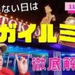 【田倉の予想】競馬のない日はメガイルミ賞 徹底解説!
