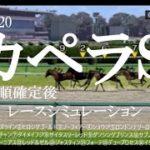 2020 カペラステークス 競馬予想 レースシミュレーション(枠順確定後)