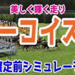 2020 ターコイズステークス シミュレーション【競馬予想】枠順確定前