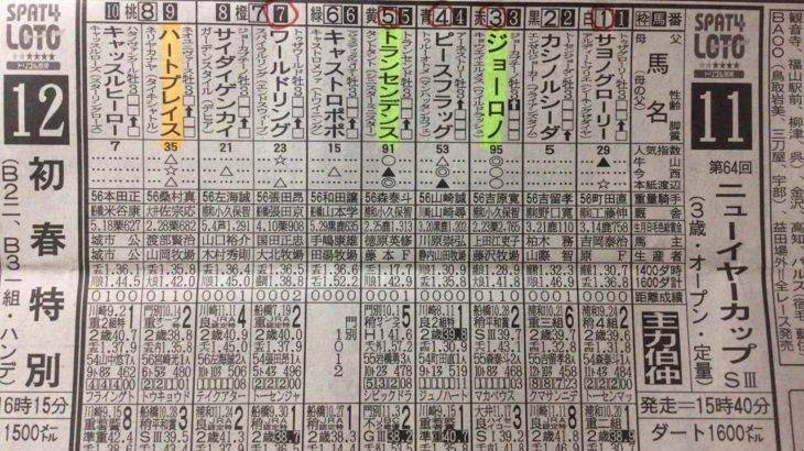 【競馬予想】 ニューイヤーカップ