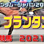 ル・プランタン賞【佐賀競馬2021予想】1800Mになって浮上する馬は?