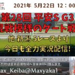 2021/5/22 第28回 平安S G3  他 新潟 5レースより頑張って全力実況配信