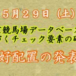 【競馬】東京競馬場 データベースに基づくチェック要素の確認 好配置等の発表
