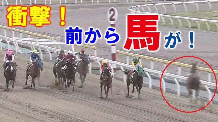 【競馬】逆走するカラ馬と競走馬があわや〝正面衝突〟