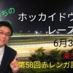 【ホッカイドウ競馬】6月3日(木)門別競馬レース展望~第58回赤レンガ記念(H2)~