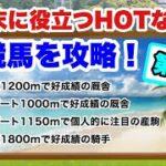 夏競馬を攻略!【第2弾】函館・小倉・福島のHOTな情報
