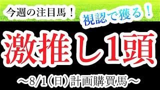 【競馬 検証 予想】8/1(日)渾身の激推し馬公開!7/31(土)激推し馬1着快勝!