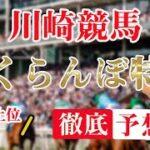 B3【 地方競馬予想 】7/5  川崎競馬予想 10R さくらんぼ特別