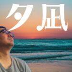 【田倉の予想】夕凪賞 徹底解説!