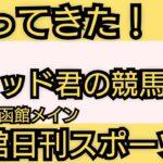 【函館日刊スポーツ杯】競馬予想 お久しぶりです!激走穴馬にサンラモンバレーを指名!