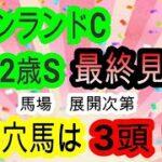 【競馬予想】キーンランドカップ2021 新潟2歳S2021 最終見解 メイケイエール アライバル他