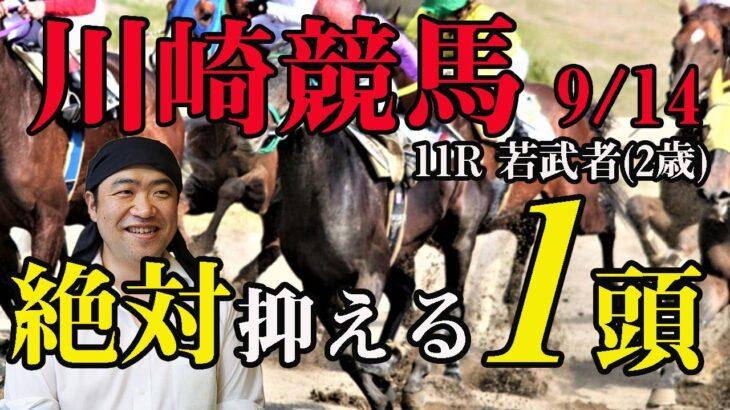【 地方競馬予想 】川崎競馬予想 11R 若武者(2歳) 競馬 地方競馬 地方競馬予想 川崎競馬 川崎競馬予想
