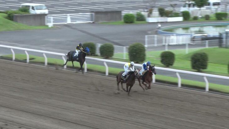 2021年9月17日川崎競馬能力調教試験