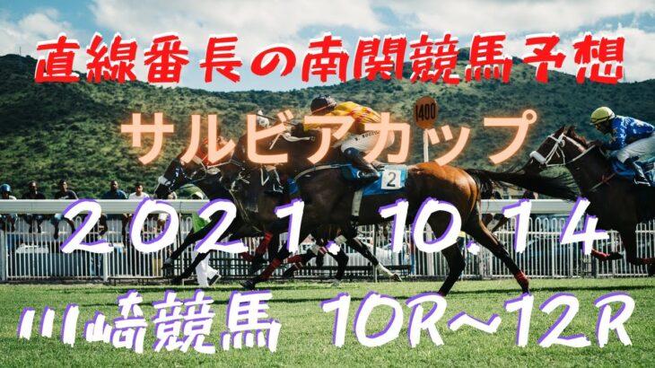 地方競馬予想【川崎競馬】10月14日 サルビアカップ 10R~12R予想