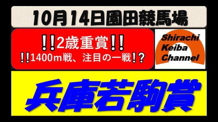 【競馬予想】兵庫若駒賞 2021年10月14日 園田競馬場