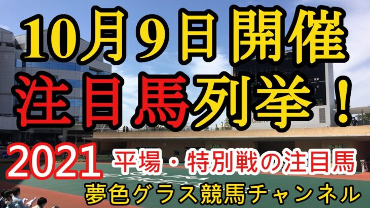 【注目馬列挙】2021年10月9日JRA平場特別戦!新潟ダート1,200mの有利脚質に基づく推奨馬?